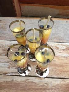 huisgemaakt ijs in champagne glas met blauwe bosbes, rode aardbeien en gele nectarine heerlijk bij een warme temperatuur